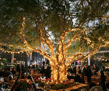 Tree Lighting Idea