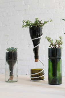 planter wine bottle